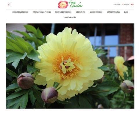 Fina Gardens 2018