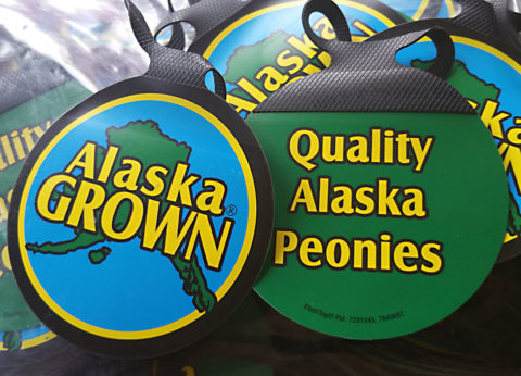 Alaska Grown brand managed by the Alaska Department of Natural Resources, Division of Agriculture. Photo by Pioneer Peonies