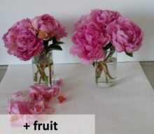 Peonies and ethylene