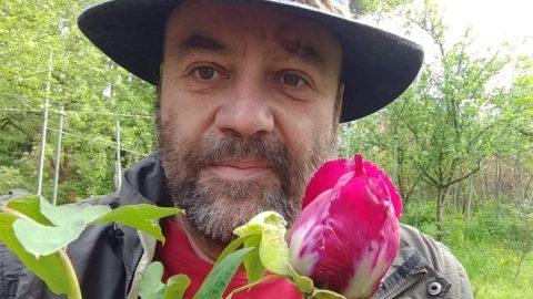 Carsten Burkhardt's web project Paeonia